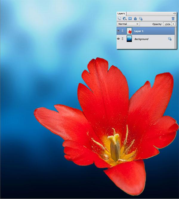 Выделение в Photoshop Elements: «волшебные» клавиши